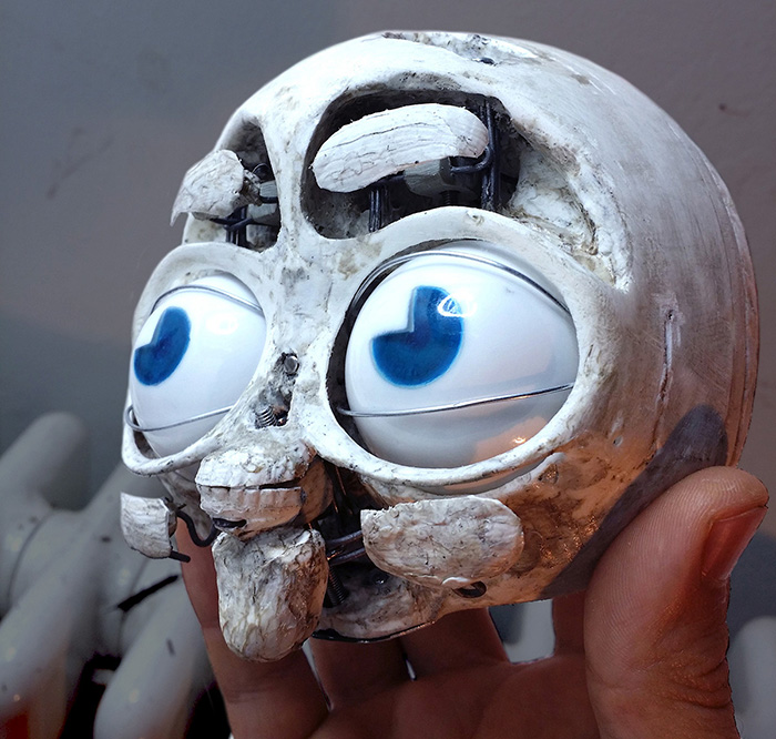 69- skull mounted